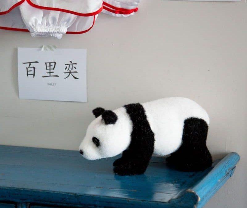 Buy of the Week: Panda Props