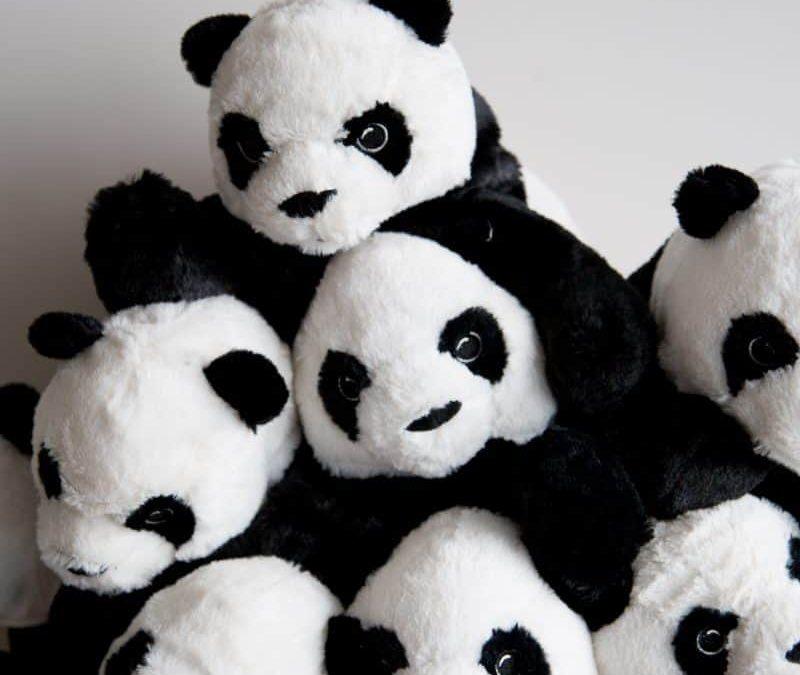 Fun: Pet a Panda