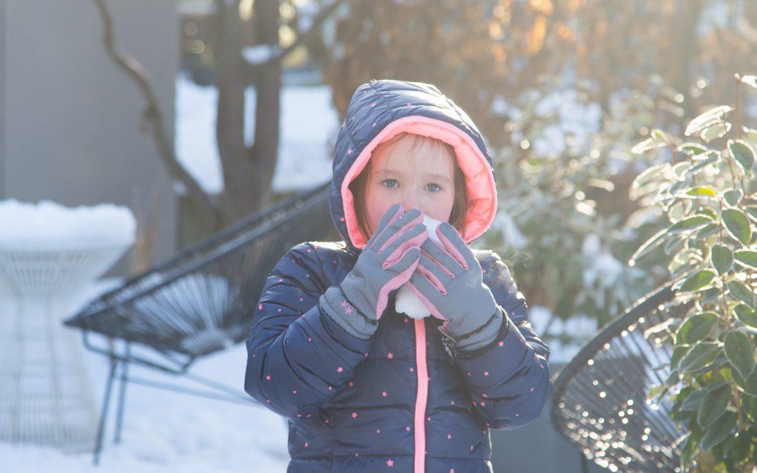 Photo of the Week – Snowfighting