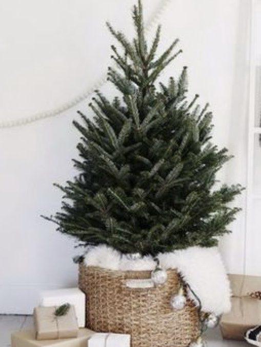 DIY – A Tree Basket
