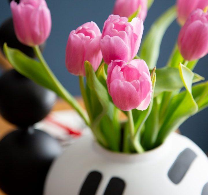Friday Flowers – Tulips